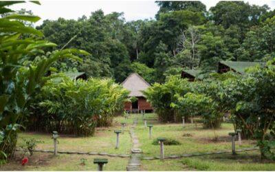 Aventura únicas Baawaja Expeditions – Ñape Lodge en la Comunidad de Infierno – Puerto Maldonado