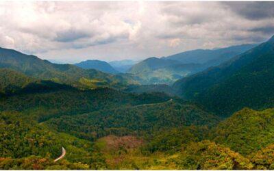 Bosque de protección de Pagaibamba