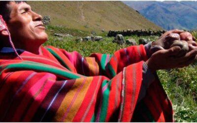 Día de La Pachamama en Cusco