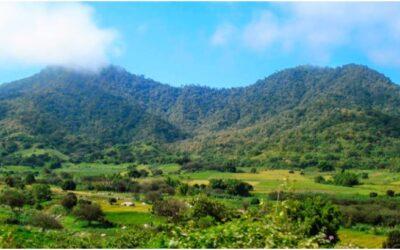 Parque Nacional Cerros de Amotape
