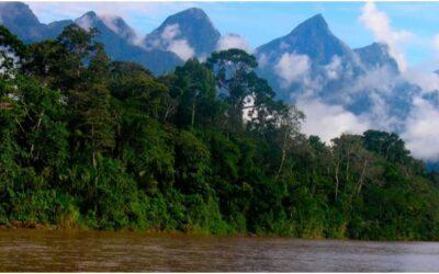 Parque Nacional Cordillera Azul