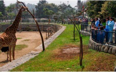 Parque Zoológico Huachipa