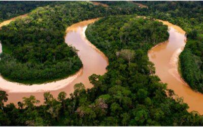 Reserva Nacional Matsés