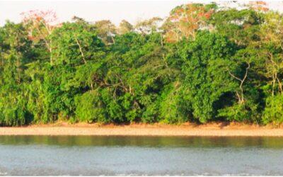 Río Aguaytía