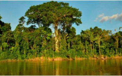 Río Curaray