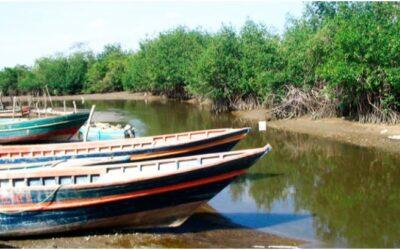 Río Zarumilla