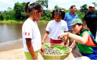 Turismo vivencial en Pacaya Samiria con liberación de 5000 taricayas