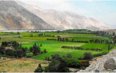 Valle de Majes